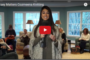 Cozmeena Enlightened Living on WJLP-TV March 2016